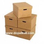 Arşiv Saklama Kutuları