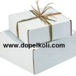 Beyaz Hediyelik Kutular